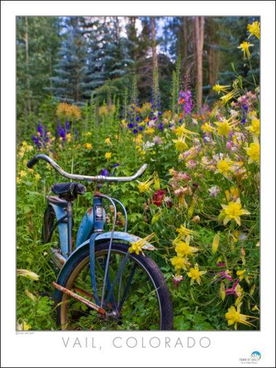 Bike vert web