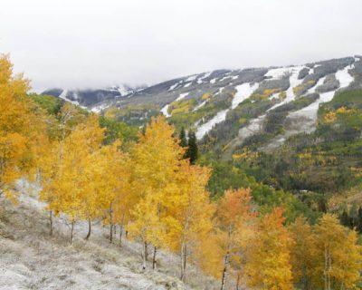 Vail-Mtn-Fall